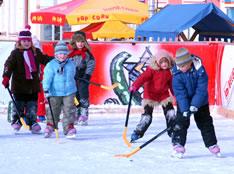 090112-hokejashi-m