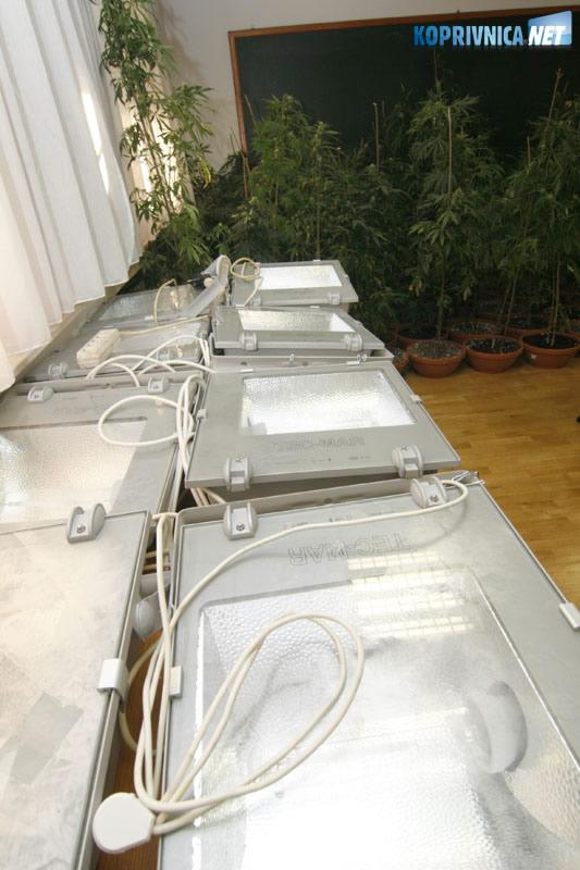 Zaplijenjena je i oprema za uzgoj marihuane. Snimio: Marijan Sušenj