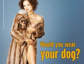 Would you wear your dog? // peta.de
