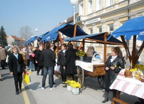 Narcisama je prikupljeno 27 tisuća kuna // foto: Radio Koprivnica
