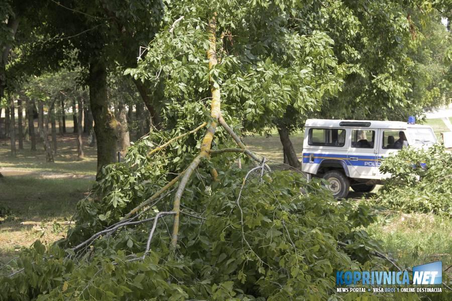 Potrgane grane su prepriječile ceste uz jezero // foto: Mario Kos
