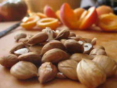 jezgra sjemenke marelice