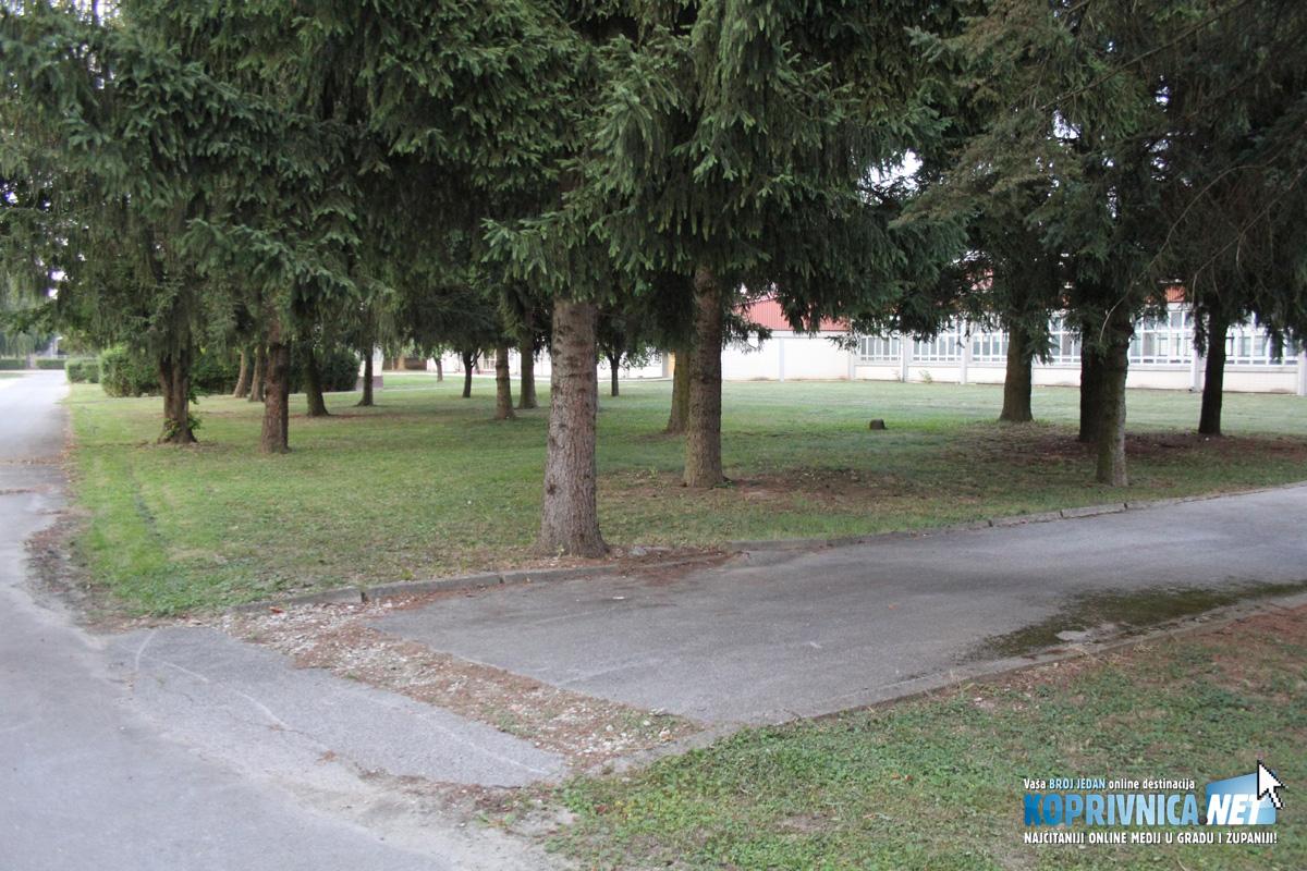 Ovdje će biti kamp i 'relax šumica' // Foto: Koprivnica.net