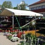 Flora Centrum Mundi Sajam cvijeća Ludbreg 2016 // foto: čitatelj