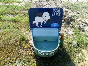Novopostavljene posudice s vodom za pse // Foto: Komunalac