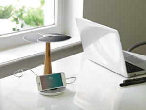 Ginkgo solarni punjač
